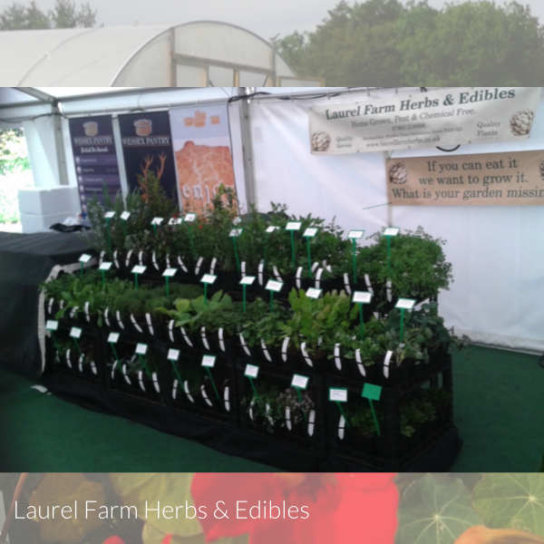 laurel farm herbs